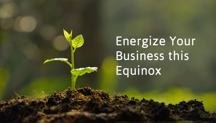 Energize Your Business at the Equinox