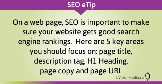 eTip: On a web page, SEO is important to make sure your website gets good search engine rankings.  Here are 5 key areas you should focus on: page title, description tag, H1 Heading, page copy and page URL.
