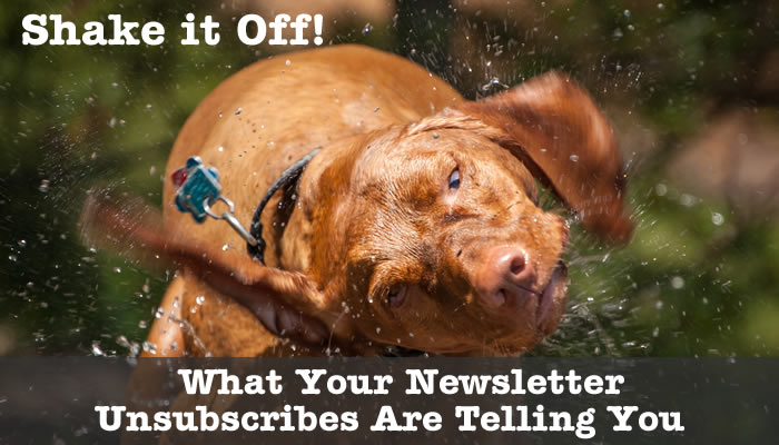 Shake it Off:  What Your Newsletter Unsubscribes Are Telling You