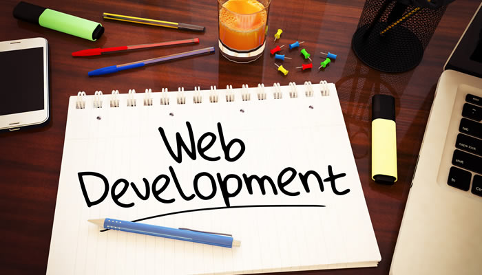 How to Determine Who to Hire To Be Your Next Ideal Web Developer - Critical Benefits and Drawbacks You Need to Know About Different Web Developer Types