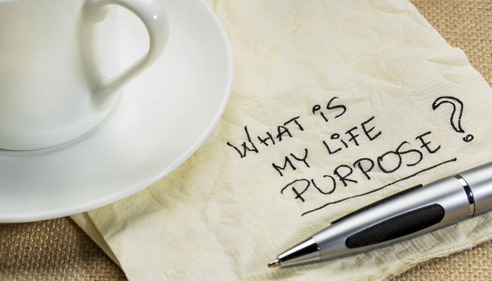 What's Not 'Feeling On Purpose' All About?