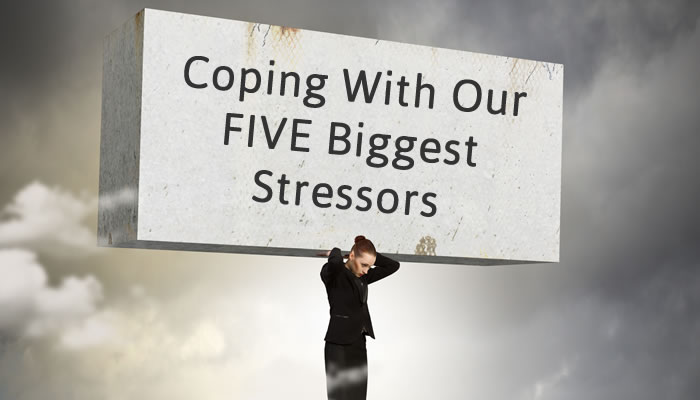 The Purpose Behind Our Five Biggest Stressors How to Cope When Dealing With the Death of a loved one, Divorce, A Move, A Major Illness, or A Job Loss