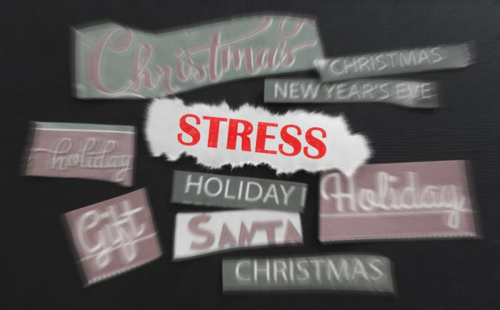 12 Tips for Thriving During the Christmas Holidays