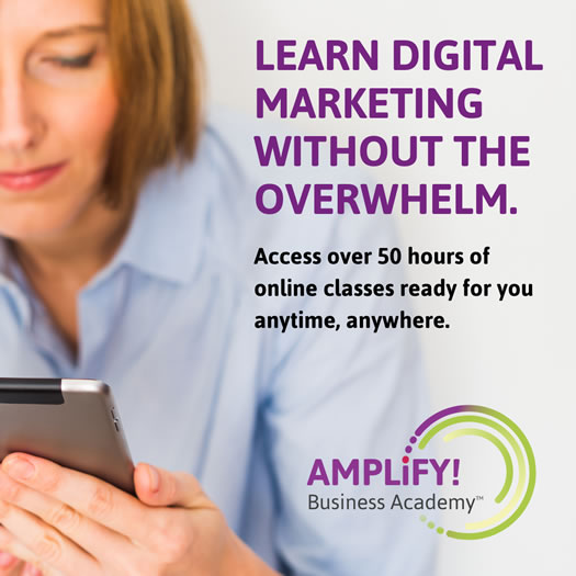 Amplify Business Academy