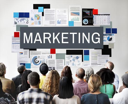 Marketing services Abbotsford BC